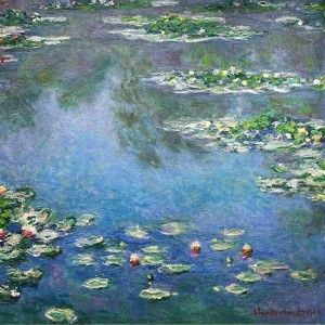 water-lilies-14
